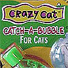 Green Crazy Cat